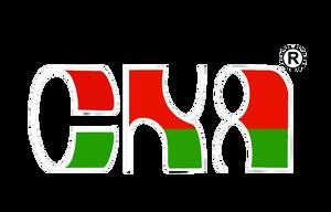 Choong Kok Agency Pte Ltd